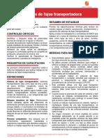 Anexo 01 Hoja Resumen de Sistemas de Fajas Transportadoras_v.01