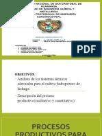Procesos productivos para la hidroponía