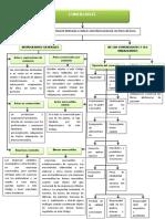 Mapa Conceptual DE DEECHO COMERCIAL
