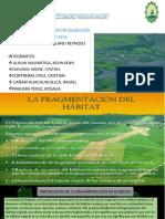 FRAGMENTACION DE HABITATS (2)