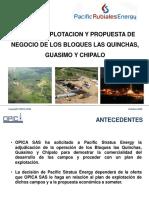 Plan de desarrollo del Bloque Las Quinchas, Guásimo y Chipalo