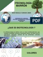 BIOTECNOLOGÍA MARRÓN