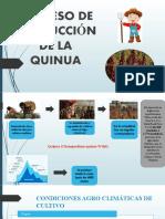 PROCESO PRODUCTIVO DE LA QUINUA