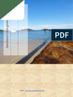 gestion-du-temps-30 pges.pdf