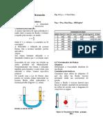 Relatório - Fenômenos do Transporte.docx