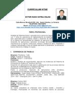 CV VIctor Sotelo.doc