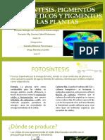 Fotosíntesis. Pigmentos fotosintéticos y Pigmentos de las plantas.pptx