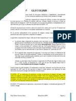 LECTURA-07-GLUCOLISIS (1) (1)