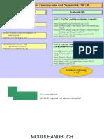 DaF_Netzplan_Modulhandbuch_2008