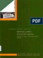Identidad_Politica_Accion-Torres_A-2007.pdf