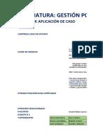 APLICATIVO GESTION POR PROCESOS GRUPO 1.xlsx
