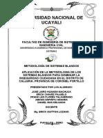 262784267-Proyet-Siste-Blandos-APLICACION-DE-LA-METODOLOGIA-DE-LOS-SISTEMAS-BLANDOS-PARA-DISMINUIR-LA-INSEGURIDAD-CIUDADANA.docx