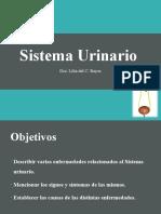 Enfermedades del Sistema Urinario