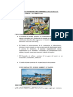 PROBLEMAS AMBIENTALES GLOBALES GBP.docx