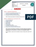 SUMARIO INFORMATIVO INFORME 1.pdf