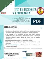 Ecografía en Emergencia y Urgencias