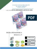 SEMANA 17 - 9º A EBG - 2020