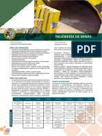 perfil de ing. de minas.pdf