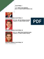 DISTRITO FEDERAL ELECTORAL