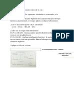 BIOLOGIA FOTOSINTESIS