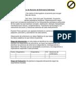 proceso_de_atencion_de_enfermeria_individual%5B1%5D