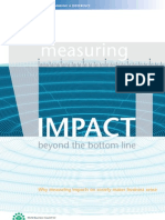 Measuring Impact Beyond the Bottom Line