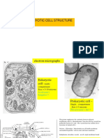 Unit 3a Eukaryotic cell structure 2020.pdf