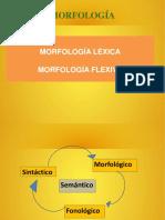 2._1_Morfologia_lexica