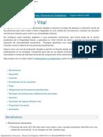 Seguridad Social_ Prestaciones _ Pensiones de Trabajadores (2020-07-09 10_51_06)