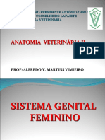 AULAS DE ANAT VET II - SIST. GENITAL FEMININO - ALUNOS -   ALFREDO V. M. VIMIEIRO 2018