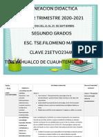 PLANEACION DIDACTICA 21-25 SEGUNDOS GRADOS
