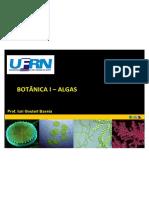 Algas - Introdução geral (Botanica I 2014 1)