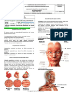 Guía 2-CN-701,702-Sistema muscular-Yery-Período 3