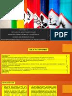 ACTIVIDAD N° 6 riesgo.pptx