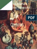 145667813-Quinonas-Antraquinonas (1).pdf