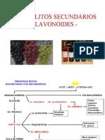 aula_3_flavonoides