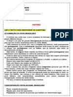 A FORMAÇÃO DO POVO BRASILEIRO.doc