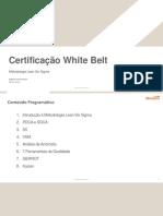 Treinamento White Belt e ferramentas adicionais (4).pdf