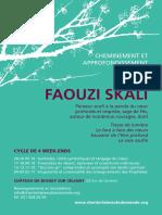 Faouzi-Skali-2016