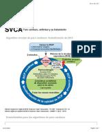 SVCA Paro cardíaco, arritmias y su tratamiento.pdf