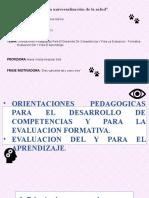 Orientaciones Pedagogicas para el desarrollo de competencias (1).pptx