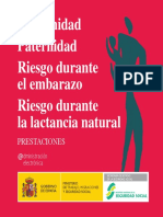 PUB033_Maternidad+Castellano_Accesible.pdf