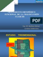 Conferencia Clase III  - tratamiento.pdf
