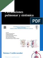 CIRCULACIÓN PULMONAR Y SISTEMICA Completo