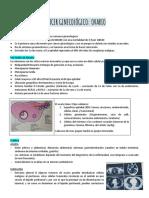 8 o 9) CANCER DE OVARIO.docx