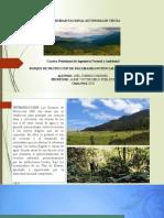 BOSQUE DE PROTECCION DE PAGAIBAMBA POTENCIAL ECOTURISMO.pptx