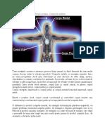 Anatomia energetică a fiinţei umane