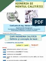 Curs_IMC_Pugna.pdf