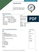 P110 Pressure Gauge