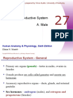 Chapter 27 - Reproductive